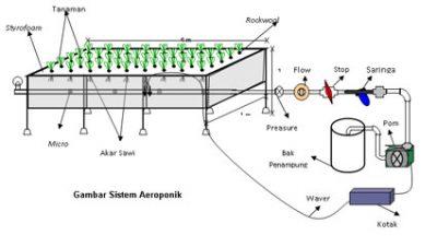 Menanam Dengan Sistem Aeroponik