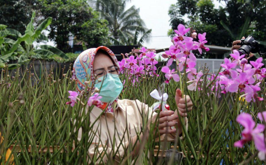 Airin Apresiasi Program Pertanian Anggrek Kelompok Wanita Tani Az-Zahra
