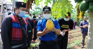 Peringati Sumpah Pemuda, Sachrudin Minta Pemuda Terus Berinovasi di Tengah Pandemi