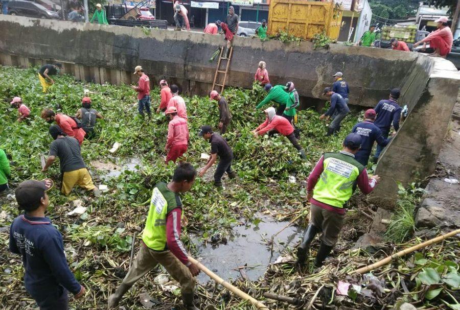 Antisipasi Banjir: DPU Tangsel Bersih-Bersih Enceng Gondok dan Lumpur di Situ 7 Muara