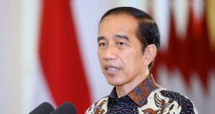 Jokowi Tandatangani Hukum Kebiri Kimia bagi Pelaku Seksual pada Anak