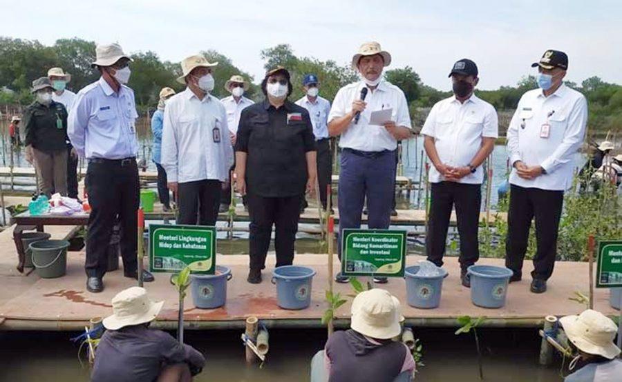 Bupati Tangerang Dampingi 4 Menteri Negara Tanam Mangrove di Desa Tanjung Pasir