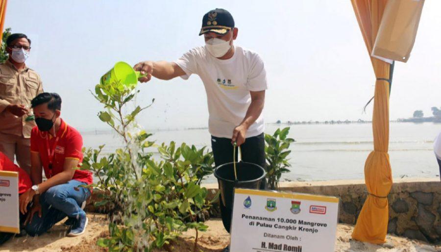 Cegah Abrasi, Pemkab Tangerang Tanam 10 Ribu Pohon Mangrove di Pulau Cangkir