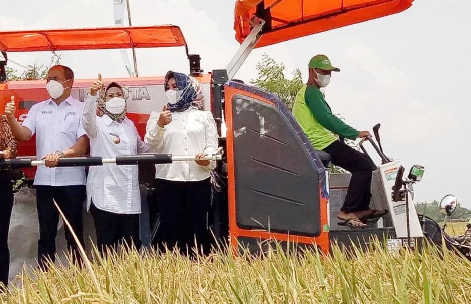 Pemkab Serang Terima Bantuan Alat Panen Padi Combine Harvester